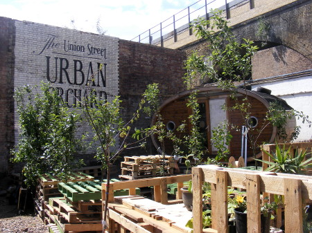 Union Street Urban Orchard