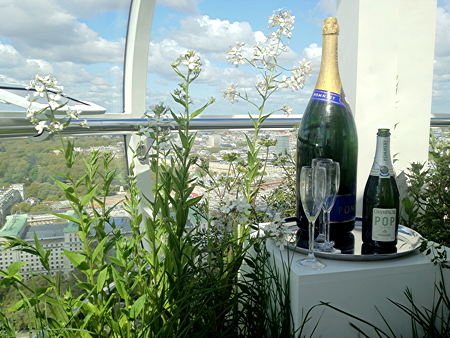 London Eye hosts pop-up garden to launch Cityscapes project