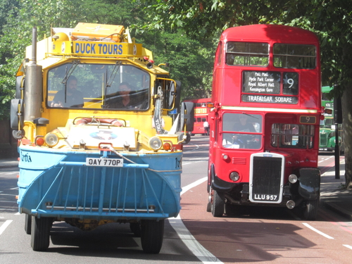 Dozens of vintage buses take part in cavalcade